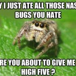 spiders are good meme