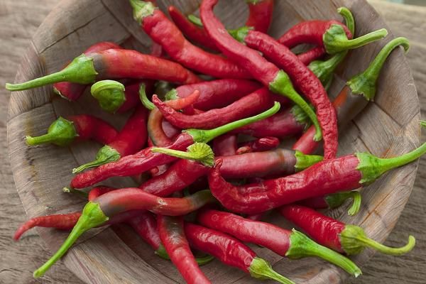 chillis-hayfever-remedy