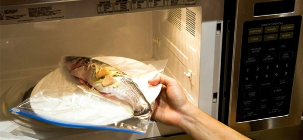 microwave fish