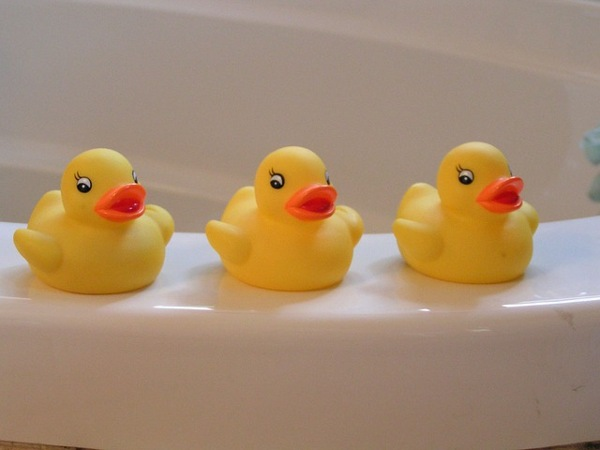 rubber-ducks-bath